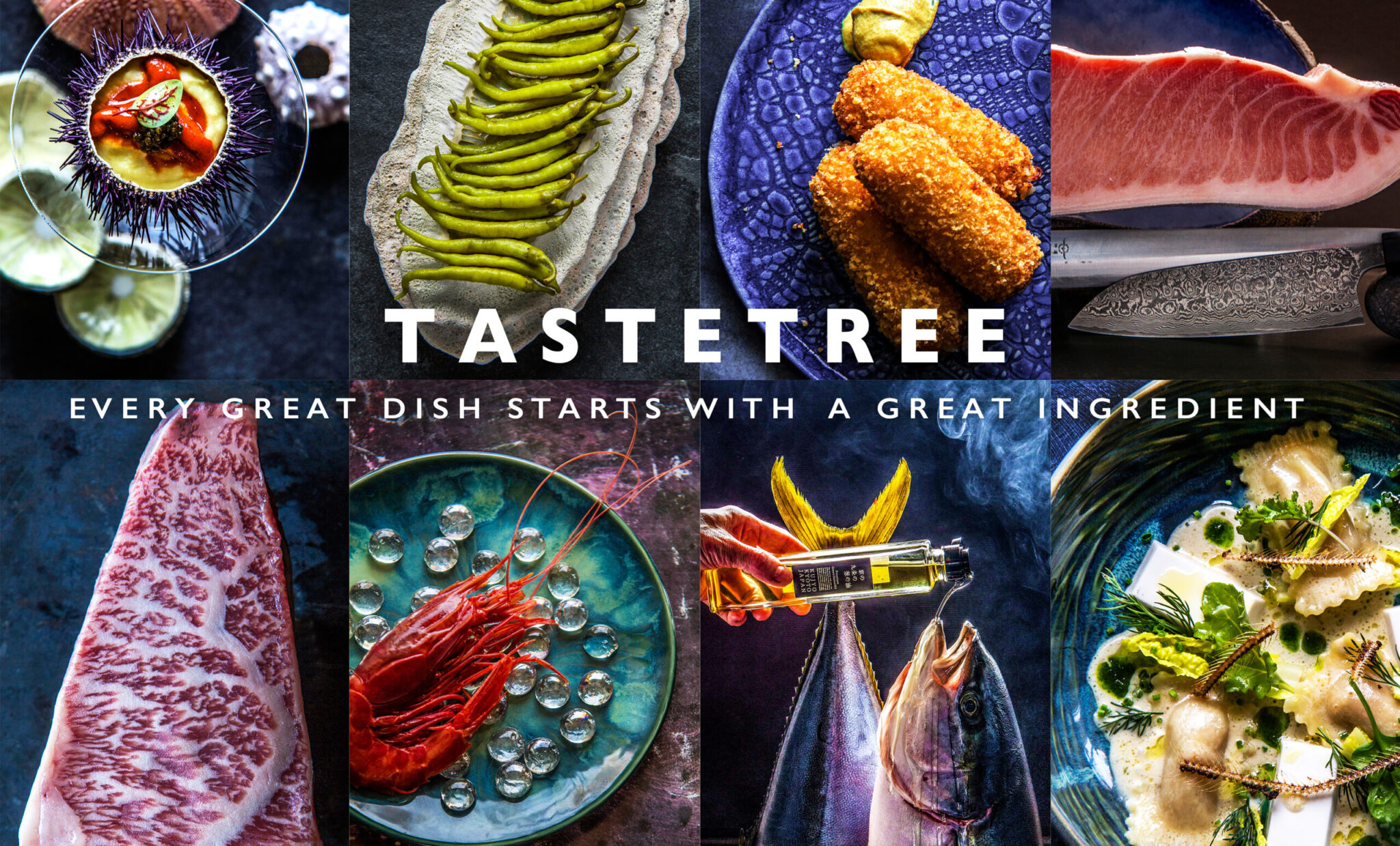 Test Page | TasteTree Home